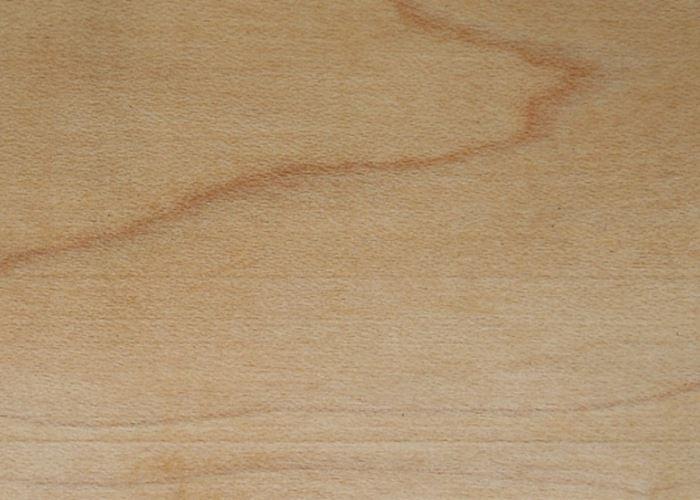 Maple (American)